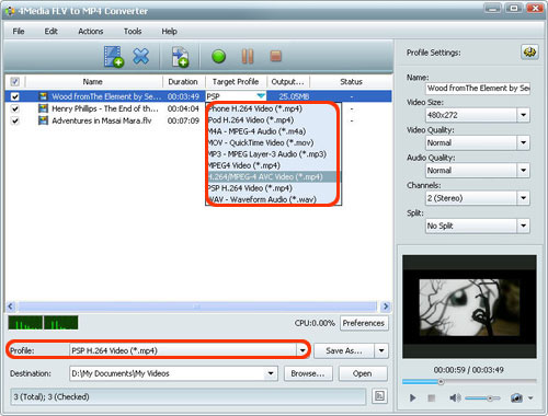 FLV to MP4 Converter software